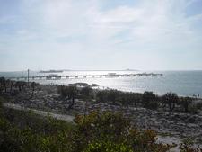 Fishing Pier & Gulf Of Mexico