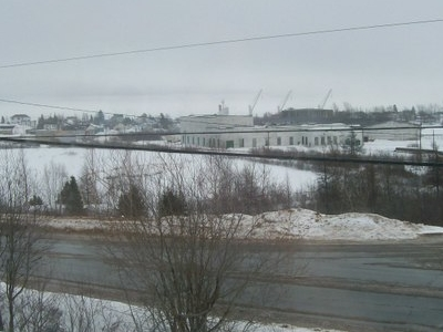 Botwood Town