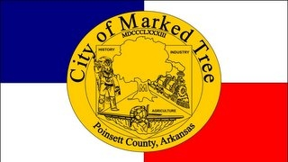 Flag Of Marked Tree Arkansas