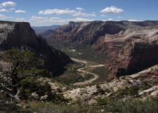 Floor Of The Valley Road - Zion - Utah - USA