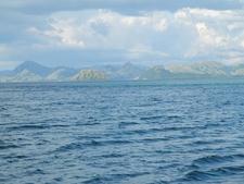 Flores Sea