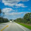 Florida Black Bear Scenic Byway