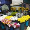 Mercado Jamaica Market