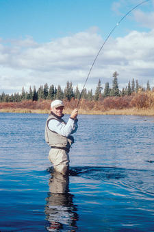 Fly Fishing In Denali National Park