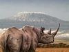 FootPrint Safaris Kenya - Nairobi