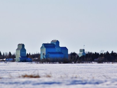 Forestburg Grain Elevators