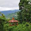Forest Cover Around Itanagar