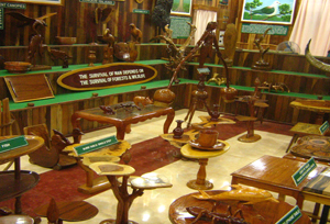 Forest Museum Cerca de Saddle Peak