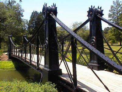 Forest  P K Bridge