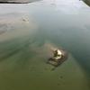 Fort Ocracoke