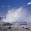 Fountain Geyser - Yellowstone - USA