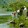 Frances Slocum Parque Estadual