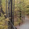 Franconia Notch Trail