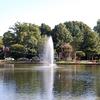 Freedom Park Fountain