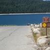 French Meadows Reservoir
