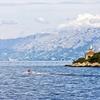 From Makarska To Jelsa