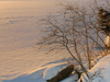 Frozen   Lake   Echo