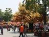FuZiMiao - Nanjing