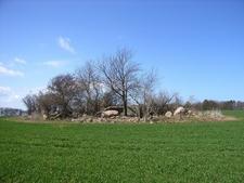 Nardevitz Erratic Surrounded By Farmland