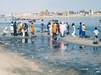 Sénégal River