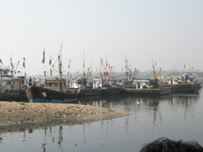 Fishing Botes In Versova