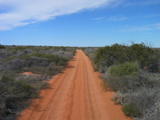 Four Wheel Drive In National Park