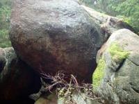 Froschfelsen
