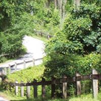 Gainesville-Hawthorne Estado Trail
