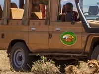 Safari Naimara