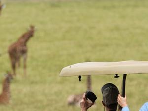 2 Days Akagera National Park Safari Photos
