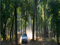 Gandhisagar Santuario de Vida Silvestre