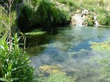 Gandy Springs