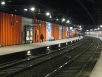Pont de l'Alma Station