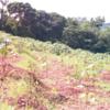 Garo Hills