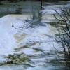 GenGeyser-6 For Botryoidal Spring - Yellowstone - USA