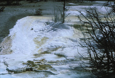 GenGeyser-6 For Little Bulger Geyser - Yellowstone - USA