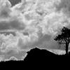 Gen-Pic For Douglas Knob - Yellowstone - USA