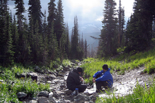 GenTrail-10 For Cosley Lake CutOff Trail - Glacier - Montana - United States