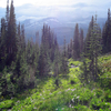 GenTrail-12 For Covey Meadow Loop Trail - Glacier - Montana - United States