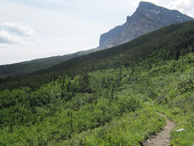 GenTrail-16 For Dawson Pass Trail - Glacier - Montana - USA