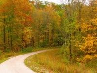 Crevice Creek Trail