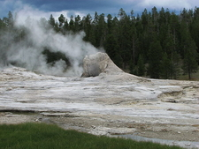 Giant Geyser - Yellowstone - USA