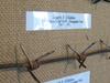 Glidden Wire