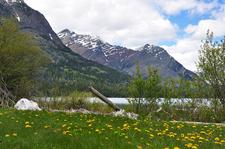 Goat Haunt Mountain - Montana - USA