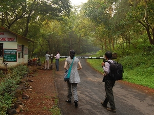 Private Tour: Jungle Adventure From Goa Including Elephant Ride, Lunch & Dinner Photos