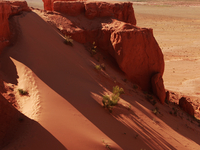 Gobi Desert Tour @ 8% Off !!!