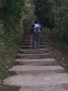 Going Up Emeishan