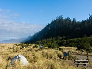 Gold Bluffs Beach Campground