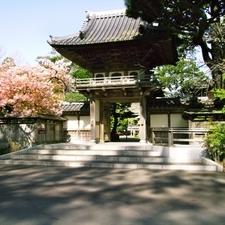 Golden Gate Park Japanese Garden Entry