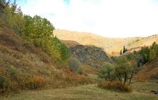 Golden Kanas Nature Reserve View